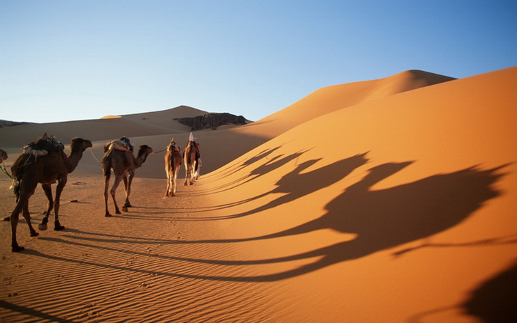 Gurun Pasir Terbesar di Dunia ini Ternyata Dulunya Danau Raksasa
