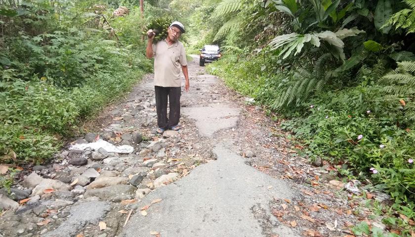Pikul Hasil Pertanian, DPRDSU: Jalan Alternatif Kecamatan Sibirubiru-Bandarbaru Rusak Parah