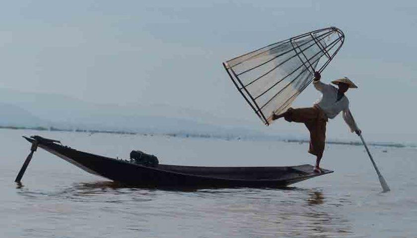 Aplikasi Nelayan Go Online Tingkatkan Kinerja Sektor Perikanan
