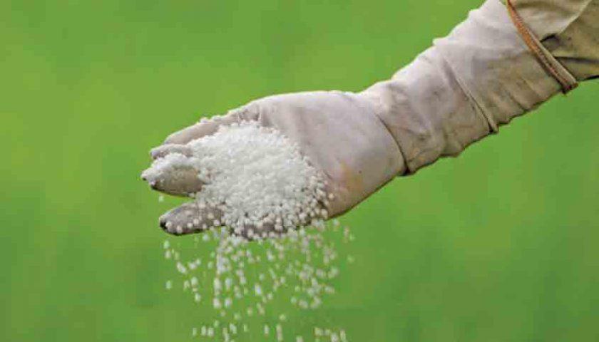 Sering Tersendat-sendat, Pemerintah Permudah Akses Pupuk Petani