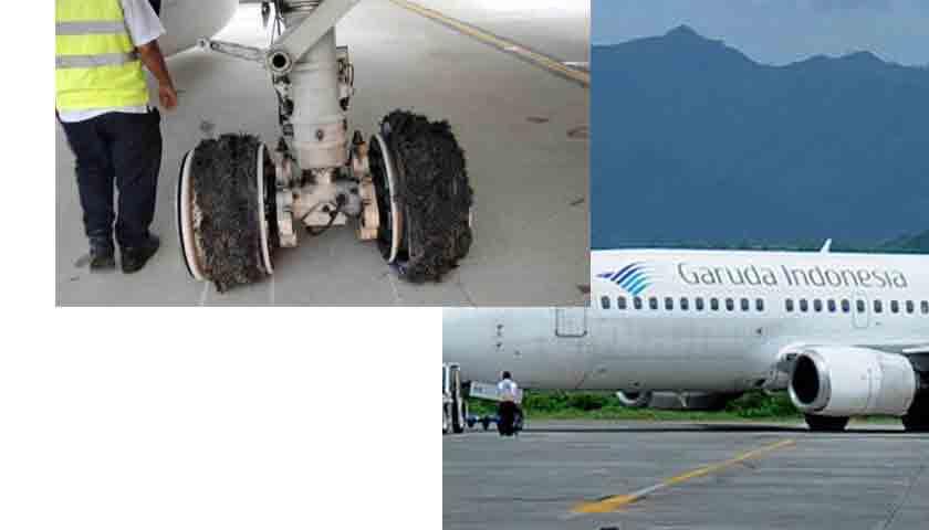 Garuda Pecah Ban, Penerbangan di Kualanamu Sempat Terganggu