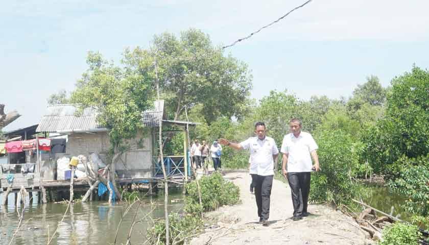 Dinas Parawisata Kota Medan Bakal Kembangkan Hutan Mangrove Jadi Destinasi Wisata