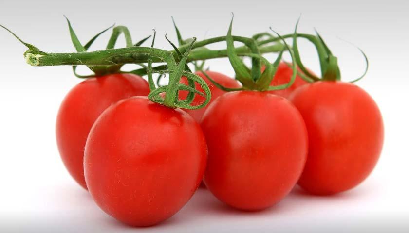 2 Efek Samping Tomat untuk Wajah dan Cara Menghindarinya