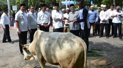 Belasan Lembu Disedekahkan ke Warga Sekitar Sumber Air