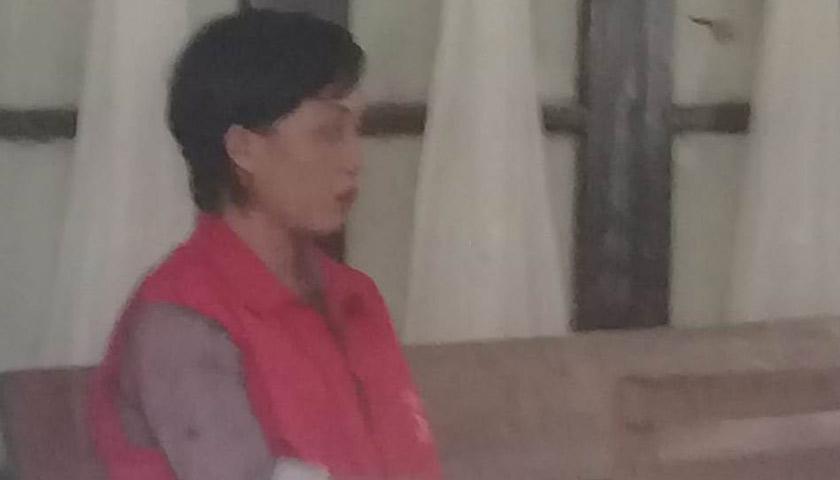 Miliki 53 Pil Extacy, Hani Divonis 6 Tahun Penjara