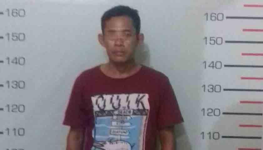 Pengedar Narkoba Simalungun 'Gol', Ditangkap Saat Membungkus Paket Kecil