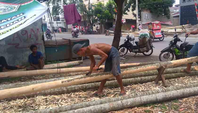 Penjualan Pohon Pinang Mulai Bergairah