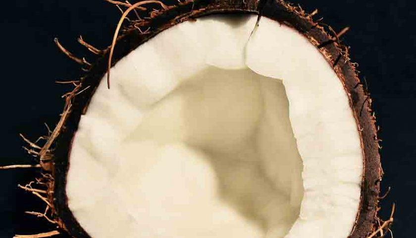 Cangkang Kelapa Sawit Berpotensi Tambah Devisa, Kata APCASI