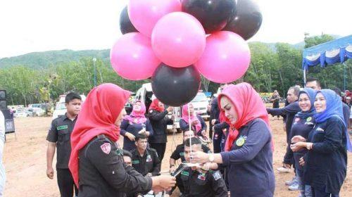 Pemkab Madina Lounching Mobil Ambulance PSC 119