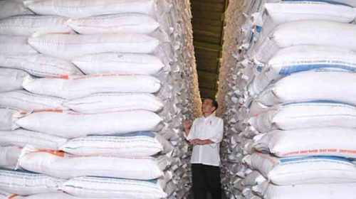 Jokowi: Harga Beras Turun, Petani Jadi Rugi