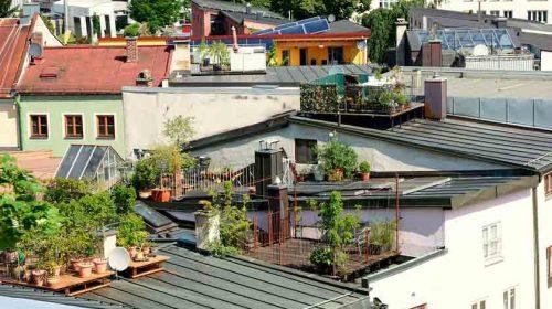 Harga Rumah Sekitar Stasiun LRT Melambung Hingga 24 Persen