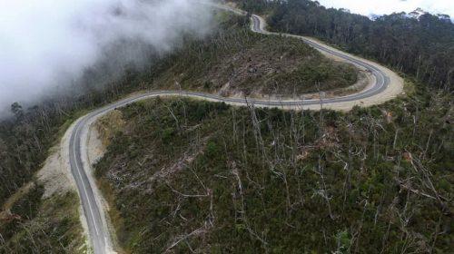 Trans Papua Bukti Komitmen Jokowi Bangun Wilayah Terisolasi