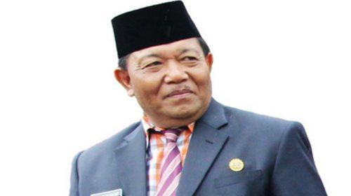 Jangan Kaitkan Jokowi dengan Bupati Madina Mundur