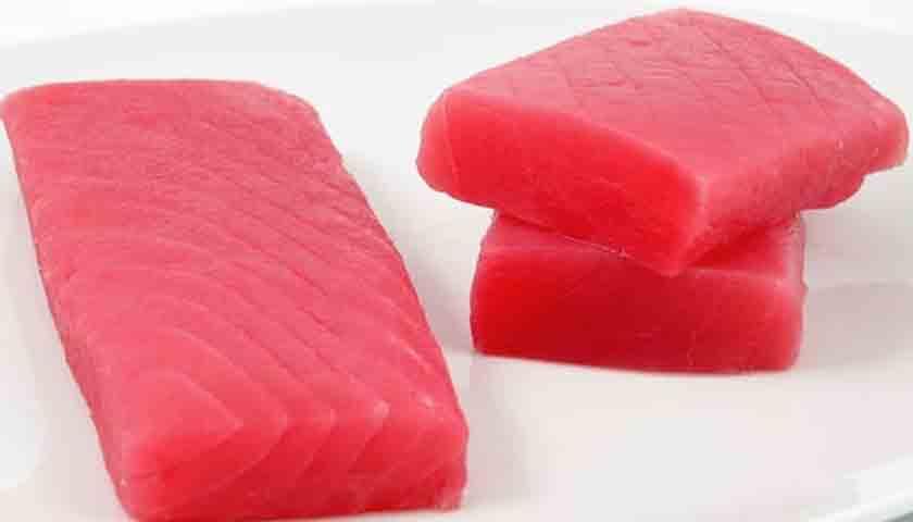 harga ikan tuna6