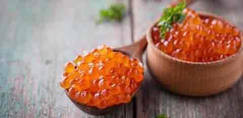 Kaviar, Makanan Termahal Orang Kaya, Kenapa?