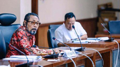 Ombudsman RI dan DPD RI Bahas RUU Partisipasi Masyarakat