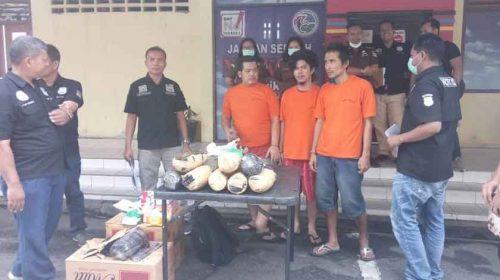 Satres Narkoba Polrestabes Medan Musnahkan Barang Bukti Ganja 21,1 Kilogram