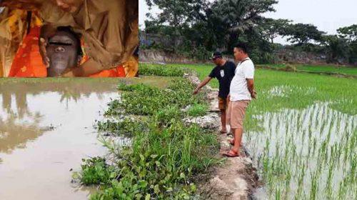 Seharian tak Pulang, Pria Ini Tewas Tenggelam di Kolam Ikan