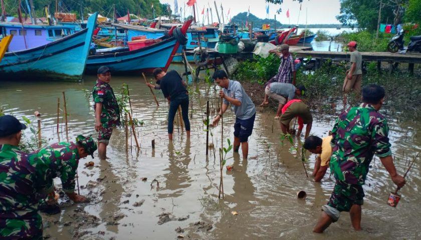 Cegah Abrasi, Bakamla Sambas dan Posmat TNI AL Pemangkat Tanam Mangrove