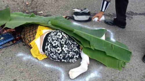 Mau Menyeberang Jalan, Boru Purba Usia 82 Tahun Tewas Ditabrak Pick Up