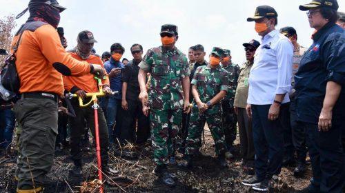 Panglima TNI Tinjau Karhutla di Palangkaraya
