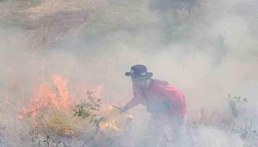 Hutan Kawasan Danau Toba Seluas 20 Hektar Terbakar, Buang Puntung Rokok Sembarangan?