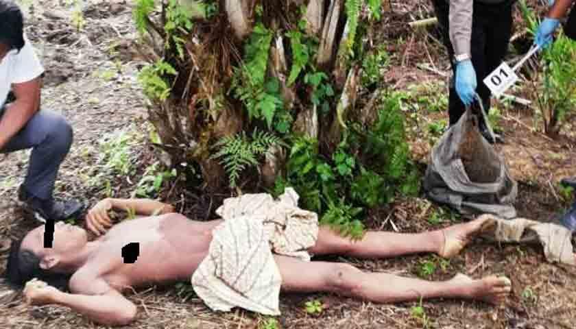 Pria Ditemukan Tewas di Bawah Pohon Sawit Kebun Pabatu
