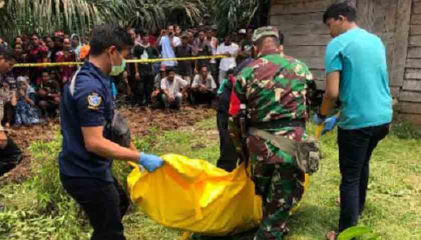 Biduan Dibunuh Selingkuhan, Jasad Ditemukan di Kandang Ayam, Pelaku Dibekuk di Palas