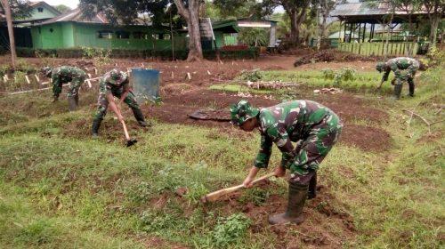 Prajurit TNI di Perbatasan Manfaatkan Lahan Kosong Jadi Kebun Sayur