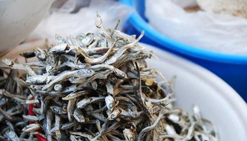 Teri, Ikan Mungil yang Bisa Bantu Jaga Kesehatan Jantung
