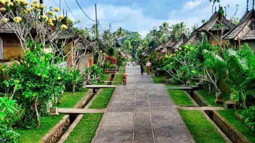 Desa Terbersih di Dunia, Ternyata Ada di Indonesia