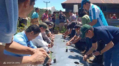 TPL Bantu Warga Kecamatan Parlilitan Desa Simataniari