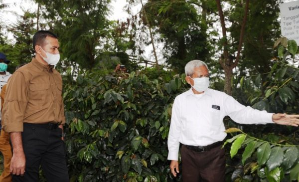 Wakil Gubernur (Wagub) Sumatera Utara (Sumut) Musa Rajekshah meresmikan Proyek Percontohan Menuju Desa Madani di Desa Kutambelin Kecamatan Namanteran Kabupaten Karo, Selasa (610). Juga melakukan panen perdana sayuran dan penana