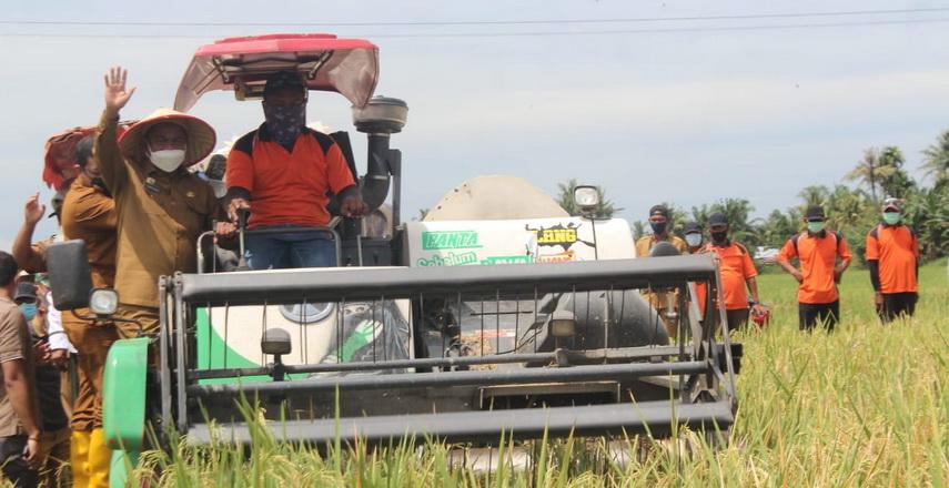 Pembangunan Pertanian untuk Meningkatkan Kesejahteraan Kehidupan Petani