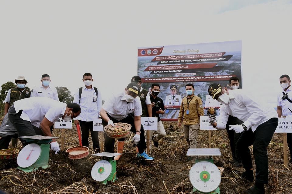 Dampingi Menko Marves di TSTH,Gubernur Edy Rahmayadi Dukung Pengembangan Tanaman Herbal di Sumut