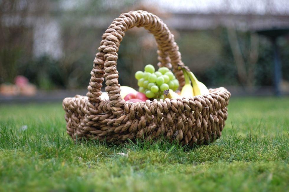 akibat kurang piknik